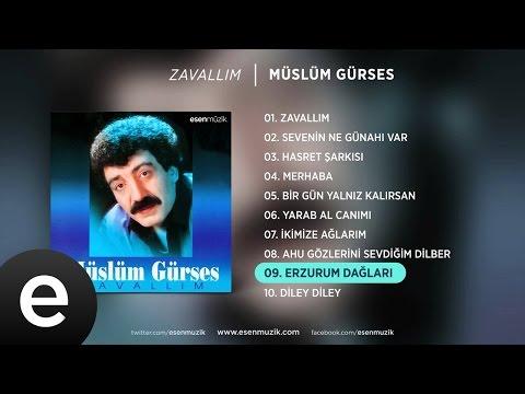 Erzurum Dağları (Müslüm Gürses) Official Audio #erzurumdağları #müslümgürses - Esen Müzik