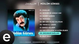 Erzurum Dağları (Müslüm Gürses) Official Audio #erzurumdağları #müslümgürses