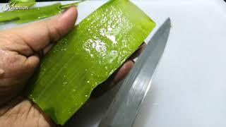 Aloevera Drink, 100% Organic Healthy Juice, Get Pure &amp Organic Aloe Vera Juice