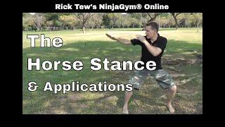Horse Stance Basics for NinjaGym Online