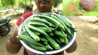 Farm fresh okra curry recipe | different taste recipe | village food
