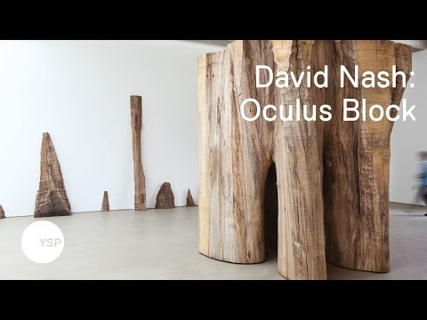 Oculus Block by David Nash