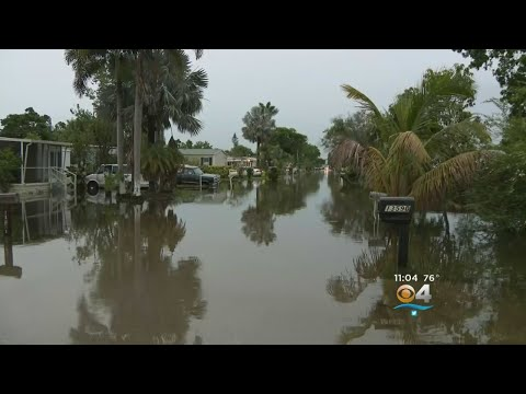 Davie Residents Dealing With Bad Flooding After Day Of Downpours