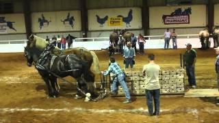 2012 Nova Scotia provincial Exhibition Horsepull