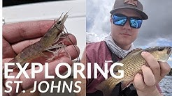 Fishing St. Johns river Jacksonville, FL. How to learn new waters.