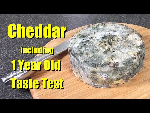 How To Make Cheddar Cheese With All Updates And Taste Tests