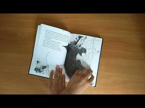 Обзор 4 книги Как приручить дракона. Как перехитрить дракона
