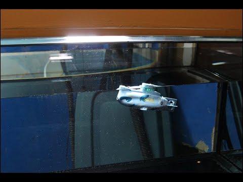 Remote Control Mini Submarine (110 Gallon Aquarium) Practice Run