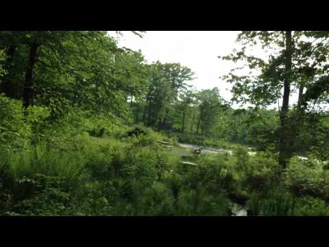 High Point State Park - Sawmill Campground