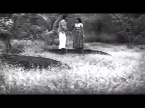 Marivillu Panthalitta... : Theerthayathra(1972)