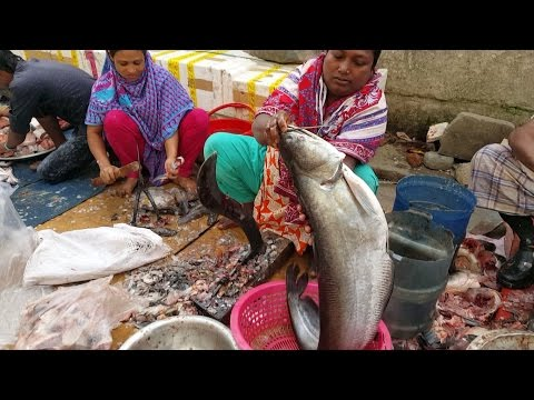 Woman Fish Cutting Worker In Fish Market | Faster Fish Slice By Lady