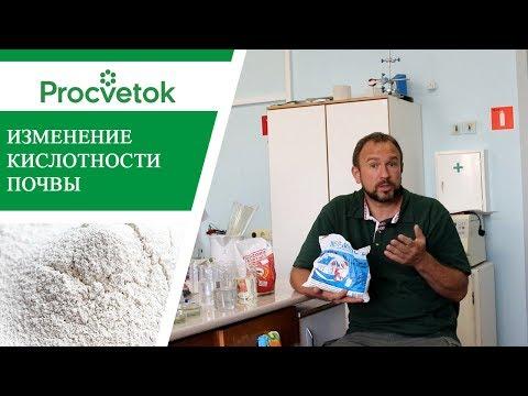 Как повысить кислотность в почве