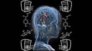 Drum & Bass Mix - Sugar & NeuroElectrocrine Stimulation