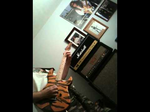 Peavey VTM 120 W/ DIY George Lynch Style Bengal Guitar