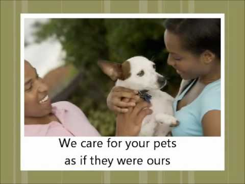 Veterinarian Video For Sale – Customize it for your Veterinarian Website