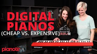 Download song Does Price Matter? (Cheap vs Expensive Digital Pianos)