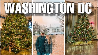 Touring the White House Christmas Decorations (AMAZING!)  Spending a Weekend in Washington, D.C.