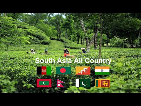 South Asia All Country - Profile