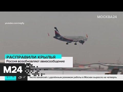 Россия с 1 апреля возобновит авиасообщение с шестью странами - Москва 24