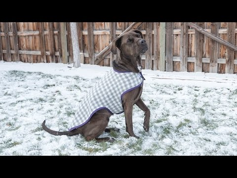 how-to-sew-a-dog-coat---pattern-and-assembly