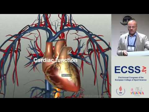Cardiovascular Function during Exercise - The Spinal Cord Injury Model - Prof. Theisen
