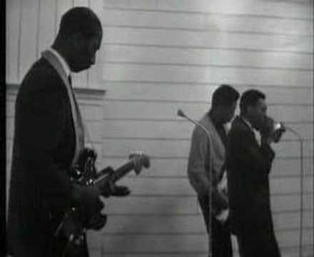 Hound Dog Taylor  & Little Walter - Wild About you baby