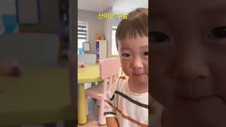 두살 아이의 귀욤 터지는 발음