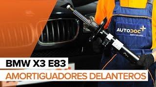 Mantenimiento BMW X3 E83 - vídeo guía