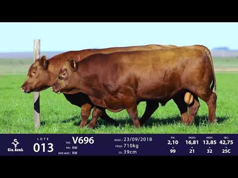 LOTE 13 - TAT V662 e TAT V696