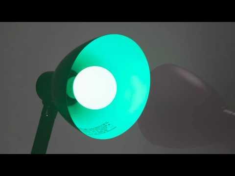 Illumin8 A19 Green Decorative Colored LED Light Bulb
