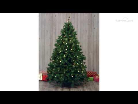 Rideau De Lumière Pour Arbre De Noël De 150 Cm 120 Led