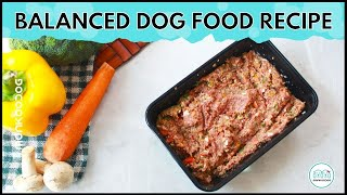 How to make highly Nutritious homemade dog food in Quick & Easy steps || Monkoodog