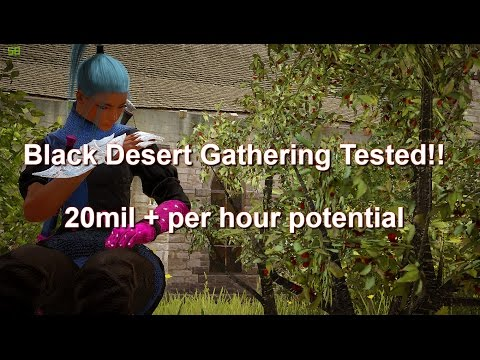 Black Desert Online| Silver per hour with Pro 10 gathering!! Results at  10:15