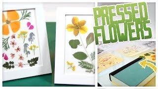 DIY Pressed Flower Art! - Do It, Gurl