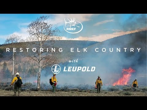 Restoring Elk Country-Little Snowy Mountains Montana