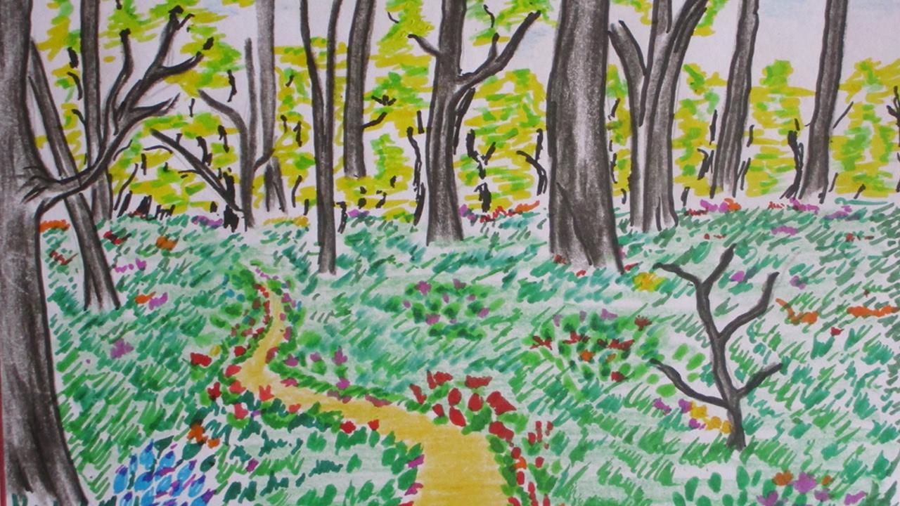картинки рисовать про лес будет