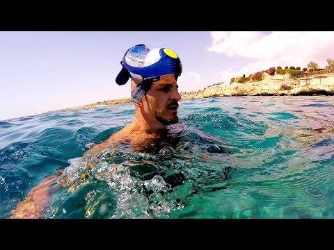 Риф в отеле Siva Sharm 5* - Египет -2019