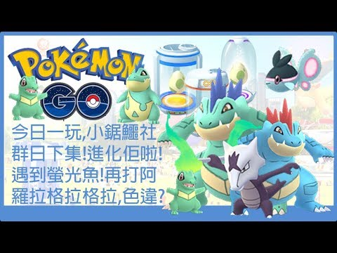 Pokemon go 今日一玩,小鋸鱷社群日下集!進化佢啦!遇到螢光魚!再打阿羅拉格拉格拉,色違? - YouTube