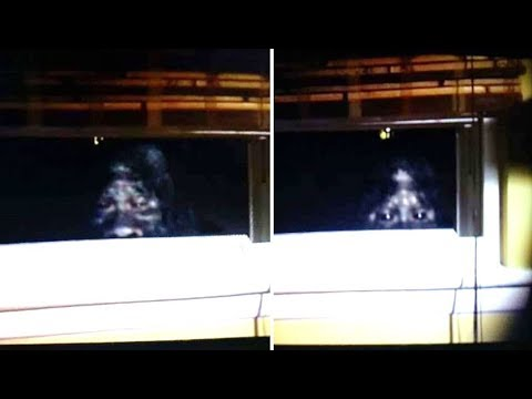 This Man Was Able To Capture The Clearest Images Of Bigfoot Ever Taken