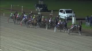 Vidéo de la course PMU HORSES2FLY GOLDEN CUP