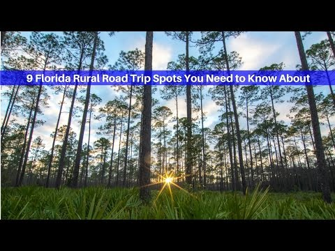 Florida Travel: 9 Rural Road Trip Spots You Need to Know About