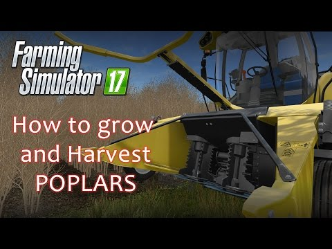 How to Grow and Harvest Poplars - A Farmings Simulator 17 Tutorial