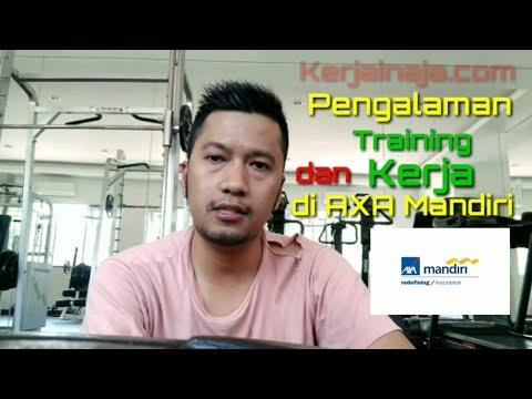 Pengalaman Training & Kerja Sebagai Financial Advisor Di Perusahaan Asuransi  2017-2019