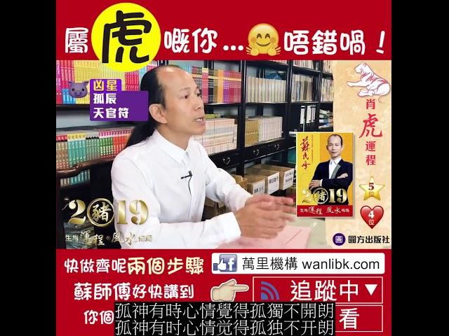 蘇民峰 2019豬 生肖運程*風水佈局 (虎) (繁简字幕)