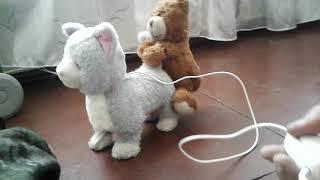 Секс-игрушка) жёсткое изнасилование)медведь насилует кошку