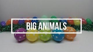 BIG ANIMALS   SURPRISE EGGS   COLORS