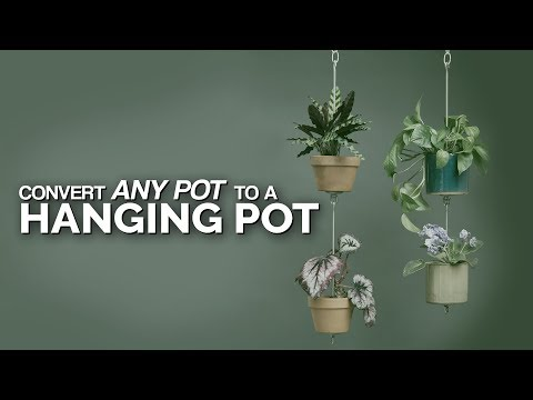 Turn Any Pot Into a Hanging Pot! 🤯