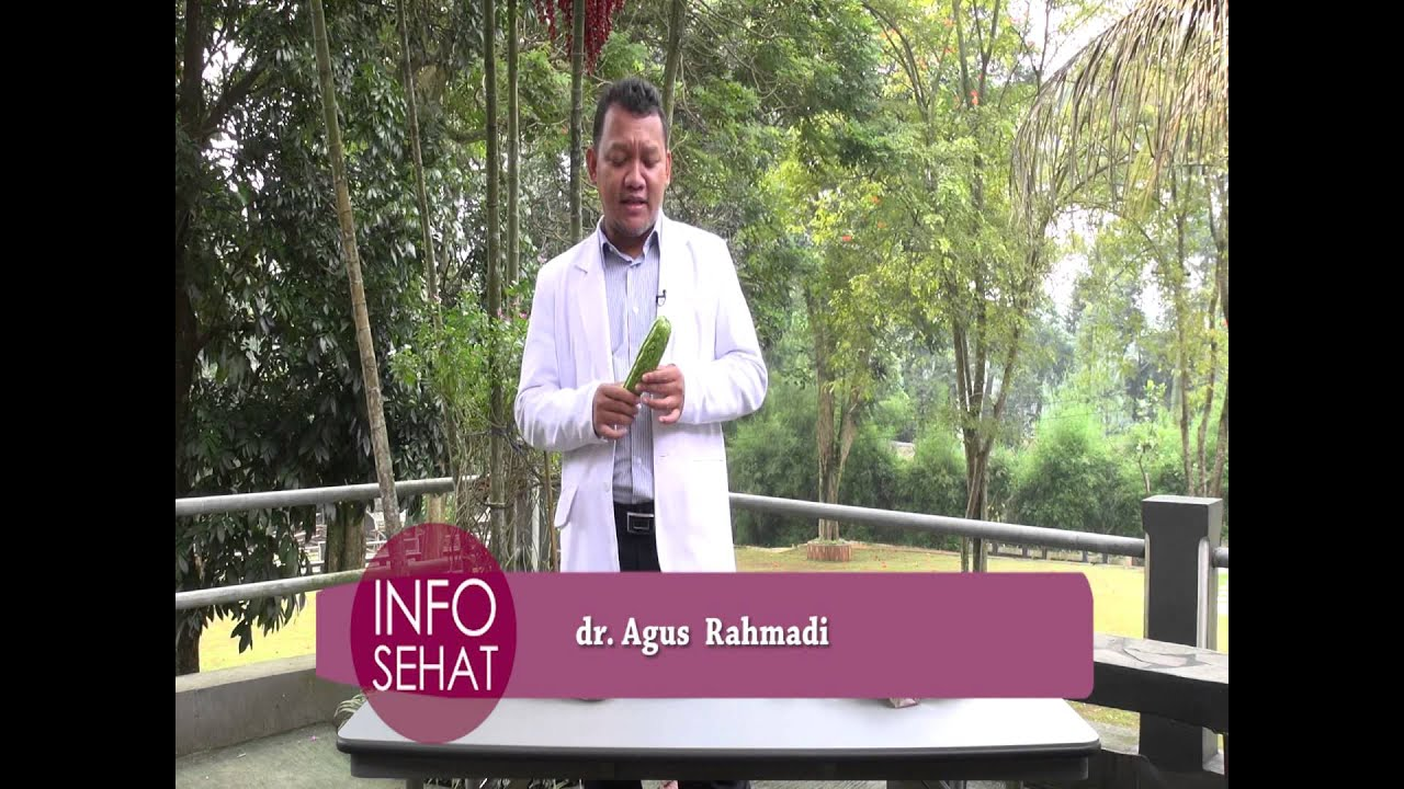 Download Video Singkat: Manfaat Sayur Pare (Info Sehat Ummat TV)