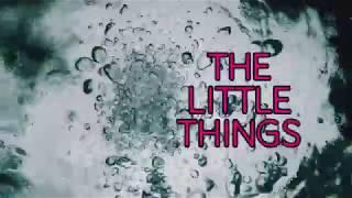 Amazed Daily Trailer