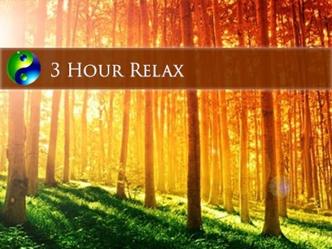 3 Hour Relaxing Music: New Age Music; Instrumental Music; Relaxation Music; Gentle Music 🌅114